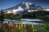 Enjoy the beauty of the Northwest!
