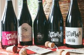 Dry, sparkling reds, from £14 a bottle
