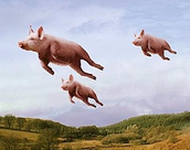 Pigs Do Fly!