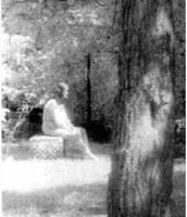 madonna of bachelors grove