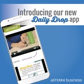 The Daily Drop App.