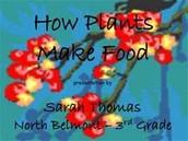 Plants make food