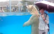 Miss Susan and the Polar Bear...