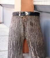 pantalones cortos de locos