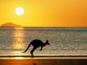 Australia Fact