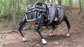 What task does the robot perform?What human function or task does this robot simulate?