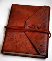 Lily's Journal