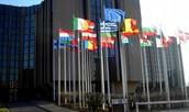 TRIBUNAL DE CUENTAS EUROPEO (TCE)
