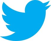 The current twitter logo