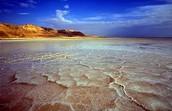 למה כדאי לבקר בים המלח