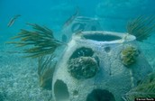 How do artificial reefs benefit oceans