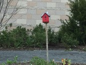 Estabrook's red birdhouse...