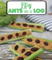 "RECIPE CORNER- ""Ants on a Log"""