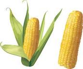 El maíz - Corn $1.99
