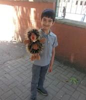 We are in our school garden