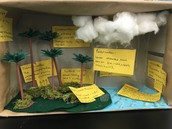 Lola's Tropical Water Cycle