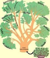Language Branch