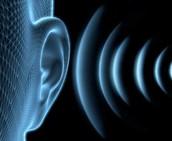 vibrations go into the ear