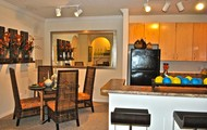 Large Open Kitchens
