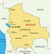 Bolivias location
