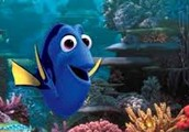 Saving The Reef-and Dory