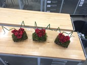 Custom Heart Arrangements for Cardiac Open House