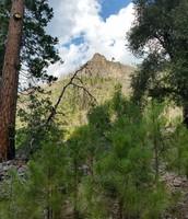 Arrowhead Peak, view from Diamond I AN I Studio