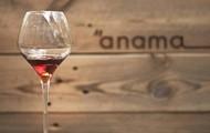Anama Concept Wine