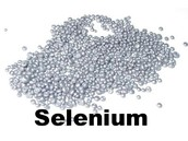 Where can you find Selenium?