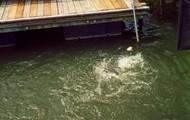 The Dock Mount: Decks, bulkheads, pilings, or tank wall.
