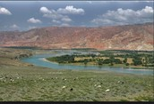 The Alluvial plain
