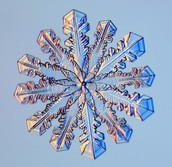 Does this snowflake have symmetry? If so, what kind; Bilateral or Radial?