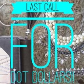 Stella & Dot's Dot Dollars end TONIGHT, January 5th @ 9pm EST!  Hurry before they're gone!!