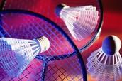 Badminton facts