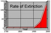 rate of extinction 1700-2000