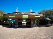 Houston Zoo Field Trip