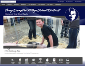 Carey EVS Website Modernized