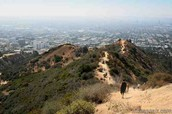 Runyon canyon hike trail
