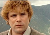 Sanwise Gamgee as Sean Astin