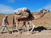 Q.)Who were the Berbers?