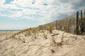 beach side veiw