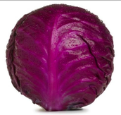 Red Cabbage!!!