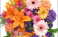 Bright And Light Bouquet