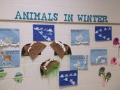 TR students studied animals that are seen in the winter.