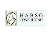 HABSG Consulting