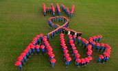 The impact of HIV and AIDS