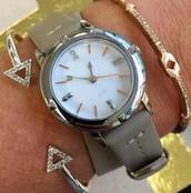 Silver & Latte Strap Watch