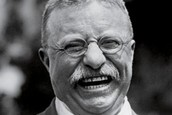 About Theodore Roosevelt (A)