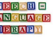 Requirements for Eligibility Speech/Language Disorders