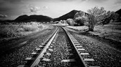 el-trains and subways